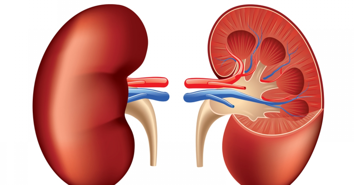 How Kidney Disease Might Affect Your Heart
