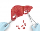 Why the Hepatitis C 'Cure' Rate Spiked
